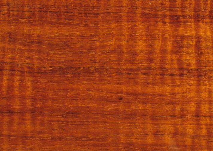 Blackwood | WoodSolutions