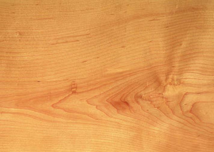 Maple American Hard Woodsolutions