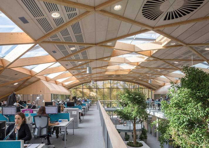 Biophilic Design is Changing the Environment   WoodSolutions